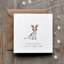 dog christmas cards dalmation dog christmas card by honey tree publishing