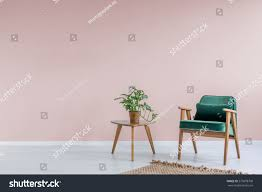 Armchair Side Table Pink Room Green Armchair Rug Side Stock Photo 575878708 Shutterstock
