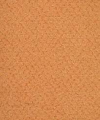 How To Make A Area Rug by How To Remove Pet Stain From A Jute Rug Cleaning Cleaning
