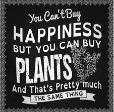 You Can T Make Someone Love You Quotes by Gardening Will Lift Your Spirits Calm You And Give You A Sense