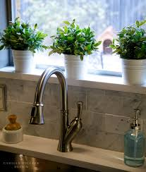 Window Sill Garden Inspiration Kitchen Ideas Kitchen Window Plants Kitchen Bay Window Ideas