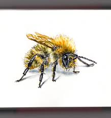 doodlewash flight of the bumblebee