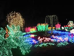 outdoor string lights with wonderful trees ornaments also