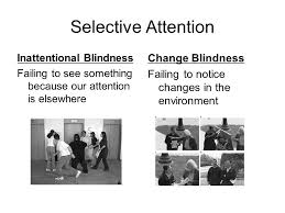 Inattentional Blindness Example Sensation U0026 Perception Day 1 Scientific Names For The Seven