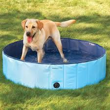 10 awesome things you u0027ll want in your backyard this summer