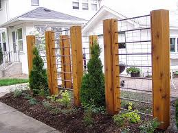 Garden Trellis Design by Best 25 Wire Trellis Ideas On Pinterest Trellis Ideas Diy