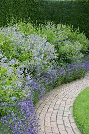 199 best cottage garden images on pinterest cottage gardens