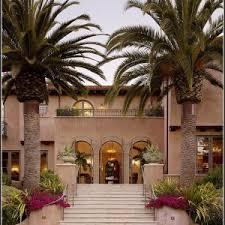 palme f r balkon welche palme fr den balkon balkon house und dekor galerie