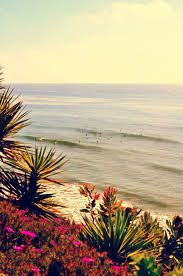 75 best encinitas ca images on pinterest san diego cardiff and