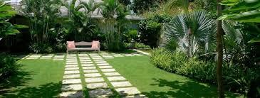 tropical garden ideas brisbane tropical garden design ideas