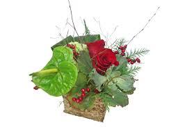christmas flowers dandelions flowers u0026 gifts