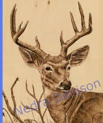 pyrography wood burning art gallery animal portraits and wildlife