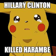 Hillary Clinton Meme Generator - meme creator hillary clinton killed harambe meme generator at