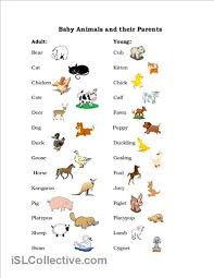 baby animals worksheet free esl printable worksheets made by
