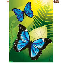 28 in flag blue morpho butterflies premier kites designs