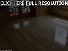 Best Flooring With Dogs Hardwood Floors And Dogs Titandish Decoration