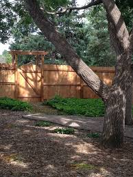 cedar fencing peak fencing