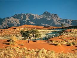 Mountain Landscaping Ideas Desert Landscape Ideas Design Home Design By John