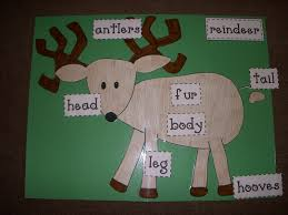 reindeer body parts labels free from mrs pollard classroom