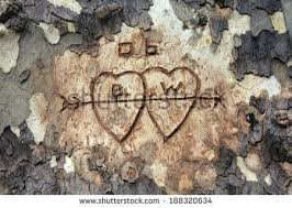 initials carved in tree two hearts initials carved tree bark stock photo 188320634
