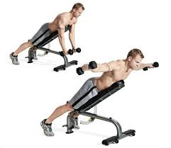 Bench Abs Workout The 30 Best Back Exercises Of All Time