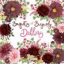 burgundy flowers watercolor dahlia bouquet png astilbe burgundy dahlia flower