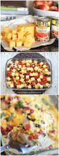 Dinner Easy Ideas Top 25 Best Mexican Chicken Recipes Ideas On Pinterest Mexican