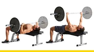 Top Bench Press Top Notch Bench Press Chest Exercises Muscle U0027o U0027 Mania