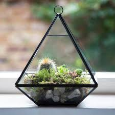 black pyramid shape terrarium planter