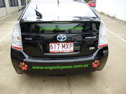 small cars black toyota echo security vehicle vehicle graphics small cars
