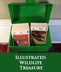 wildlife treasury cards informational wildlife cards i 3 the 80 s
