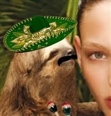 Sloth Meme Rape - mexican rape sloth meme generator