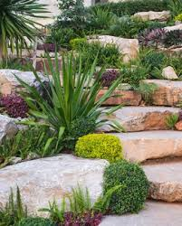 Rock Gardens On Slopes Plants To Use In Rock Gardens Lovetoknow