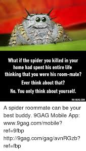 Housemate Meme - 25 best memes about spider roommate spider roommate memes