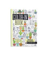 amazon succulents amazon com ooly color in u0027 book travel size cactus u0026 succulents