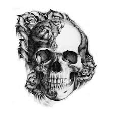 pretty would a skull sometime a reminder of our