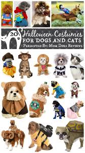 Dog Ghost Halloween Costumes by 20 Halloween Costumes For Dogs U0026 Cats Halloween Pets