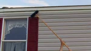 diy home maintenance cleaning vinyl siding mildew on a mobile