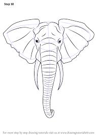 learn draw elephant head zoo animals step step