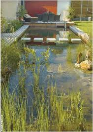 Natural Swimming Pool Best 20 Natural Swimming Pools Ideas On Pinterest Natural Pools