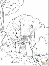 surprising plains indians coloring pages with indian coloring