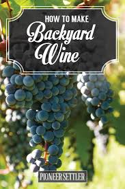 how to make wine in your backyard winemaking beginners