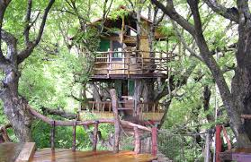 nanshan treehouse resort