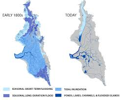 san francisco delta map why california s largest estuary no longer works for wildlife