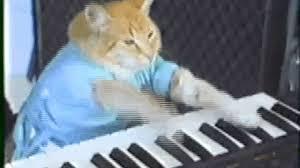 Keyboard Cat Meme - 18 memes ready for a comeback ccuk