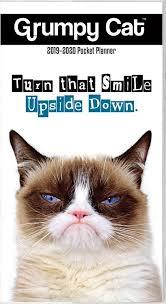 grumpy cat wrapping paper 892075 grumpy cat pocket fc jpg