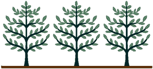 folk tree border embroidery design