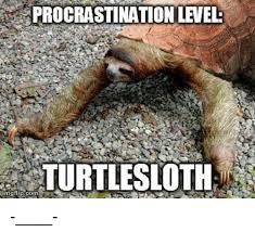 Sexy Sloth Meme - 25 best memes about skeletal muscle skeletal muscle memes