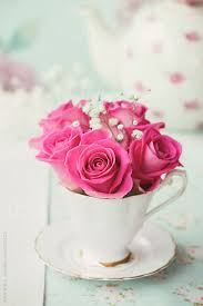 roses teacups roses and gypsophila in a teacup by ruth black blooms for the