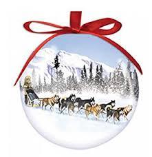 sled high gloss resin ornament health